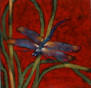 Dragonfly dreams... 20x20