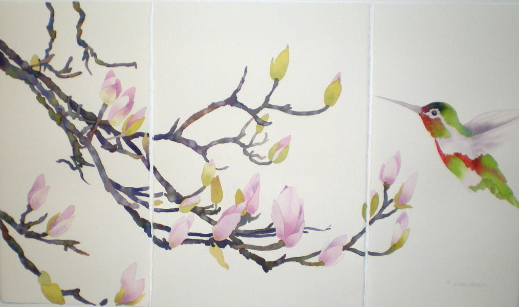 japanese magnolia tree pictures. Japanese Magnolia Mini-